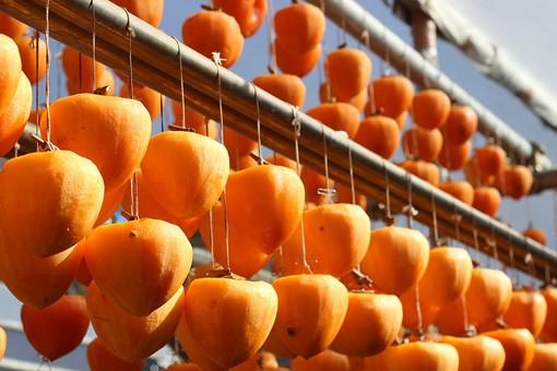 保存 法 の 干し柿